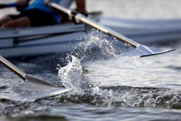 Rowers demonstrating teamwork